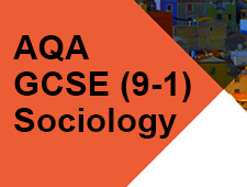 Sociology Themes and Perspectives Books